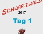 schwarzwald-17-100