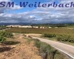whatsapp-tag3-spanien-185001