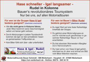 hase-igel-rudel-info19